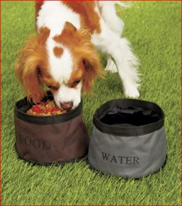 Travel-pet-bowls