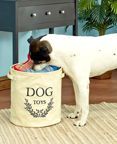 dog-toy-storage-buckets
