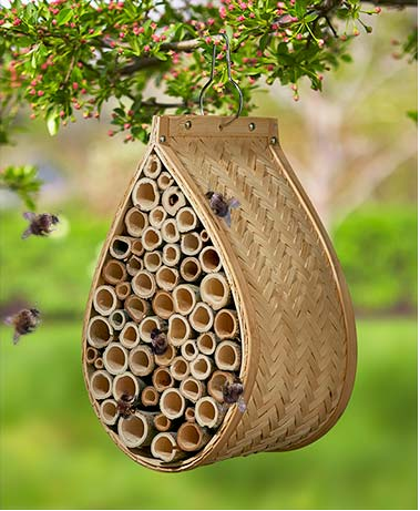 Garden Decorations - Mason Bee House