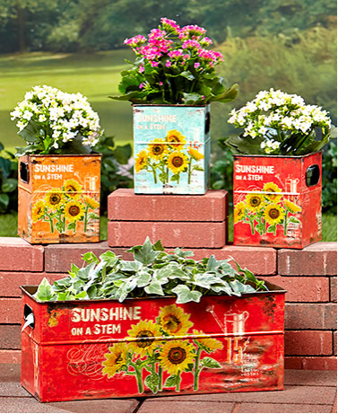 Garden Decorations - Set of 4 Sunflower Planters
