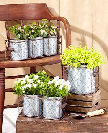 Galvanized-Planters-in-Wire-Basket