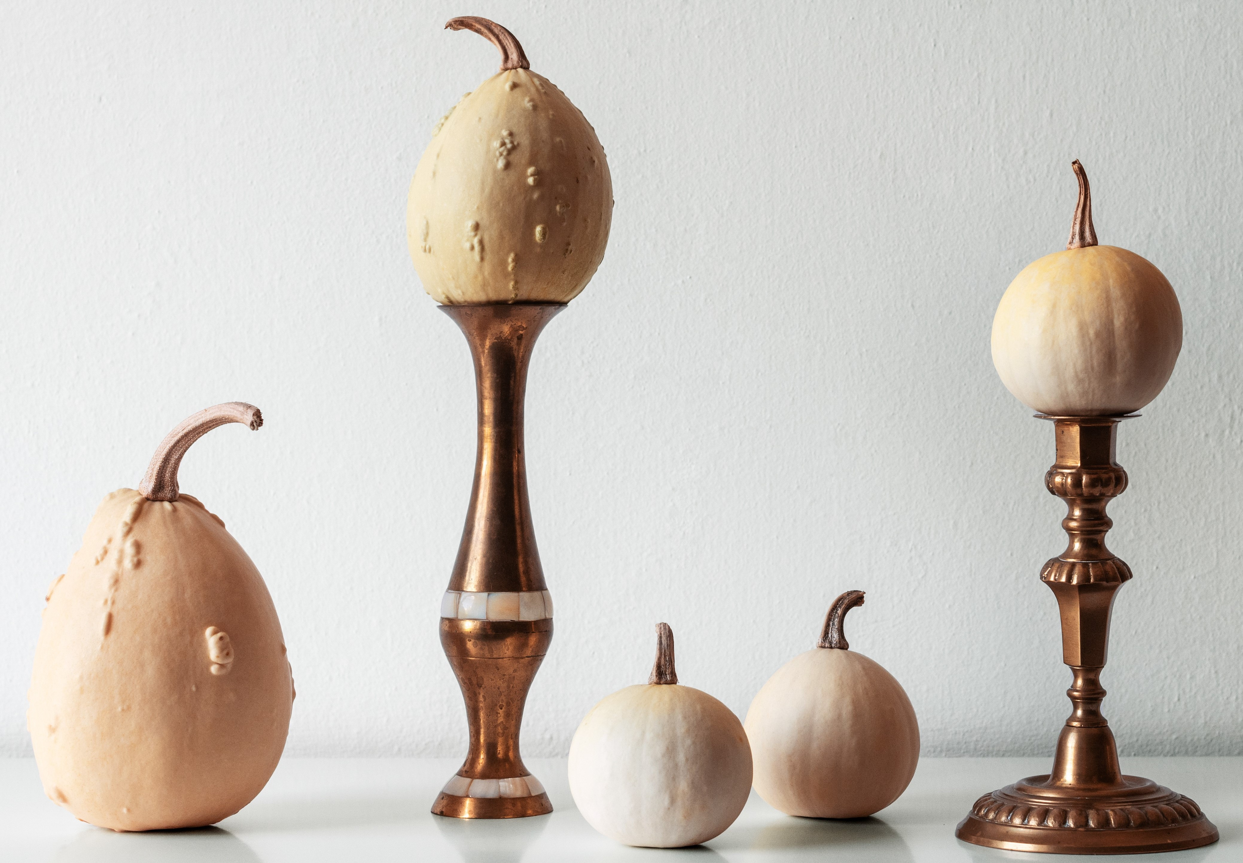 Thanksgiving decoration. Minimal autumn inspired room decoration. Selection of various pumpkins on white shelf against white wall.