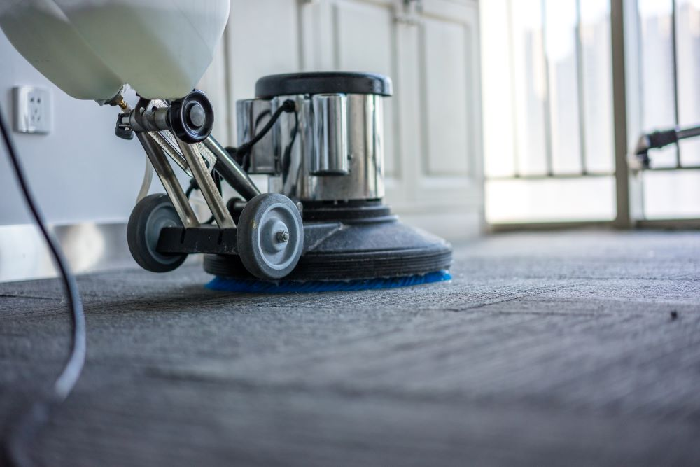 Fall Home Improvement Projects - Deep Cleaning The Carpet