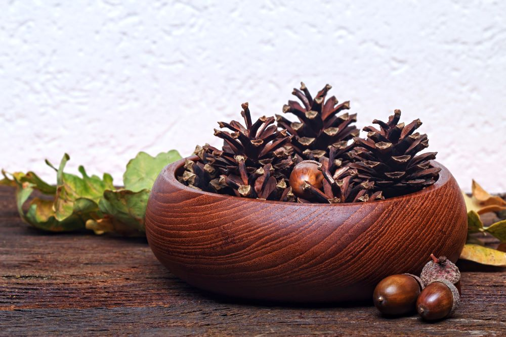 Decorate With Nature And Pine Cones
