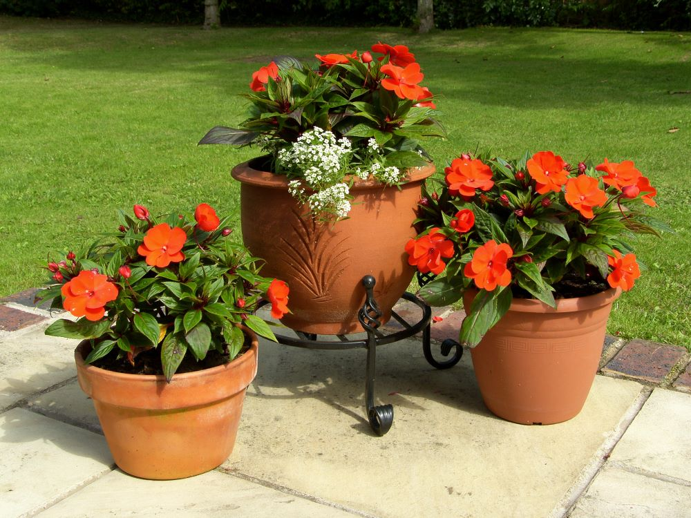 Container Gardening Tips - Pots and Planters With Drainage