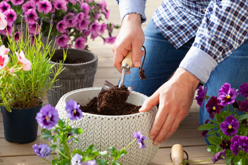 Container Gardening Tips - fill your planters with proper soil